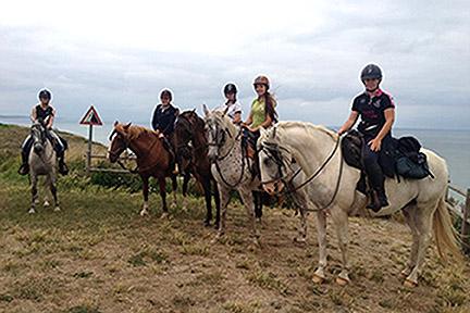 Accueil cheval 2017